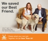 Powerhouse Business Leaders Bring Their Talent for Success to Help Shelter Pets @bestfriends