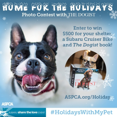Submit A Selfie Of Your Pooch And Win Great Prizes From @ASPCA and @thedogist